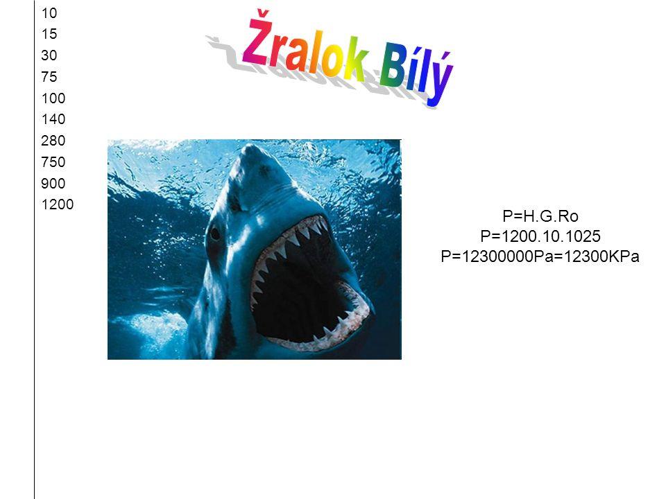 Žralok Bílý P=H.G.Ro P=1200.10.1025 P=12300000Pa=12300KPa 10 15 30 75