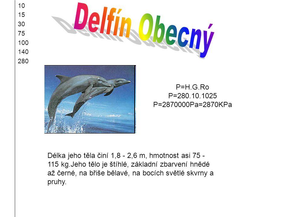 Delfín Obecný P=H.G.Ro P=280.10.1025 P=2870000Pa=2870KPa
