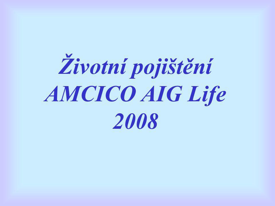 Životní pojištění AMCICO AIG Life 2008
