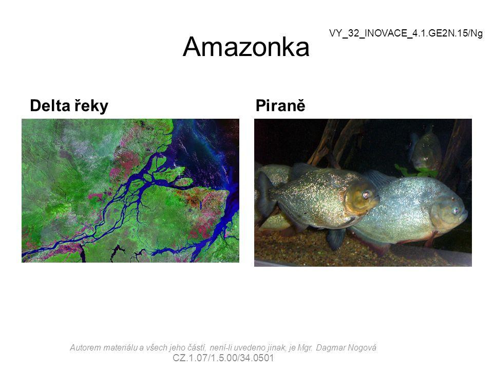 Amazonka Delta řeky Piraně VY_32_INOVACE_4.1.GE2N.15/Ng