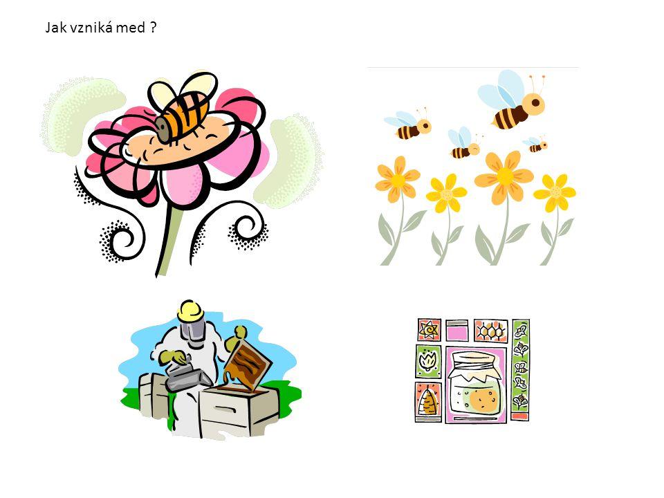 Jak vzniká med