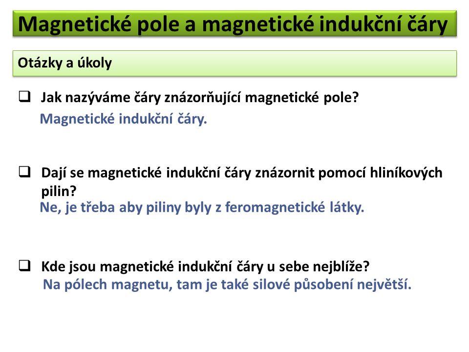 Magnetické pole a magnetické indukční čáry