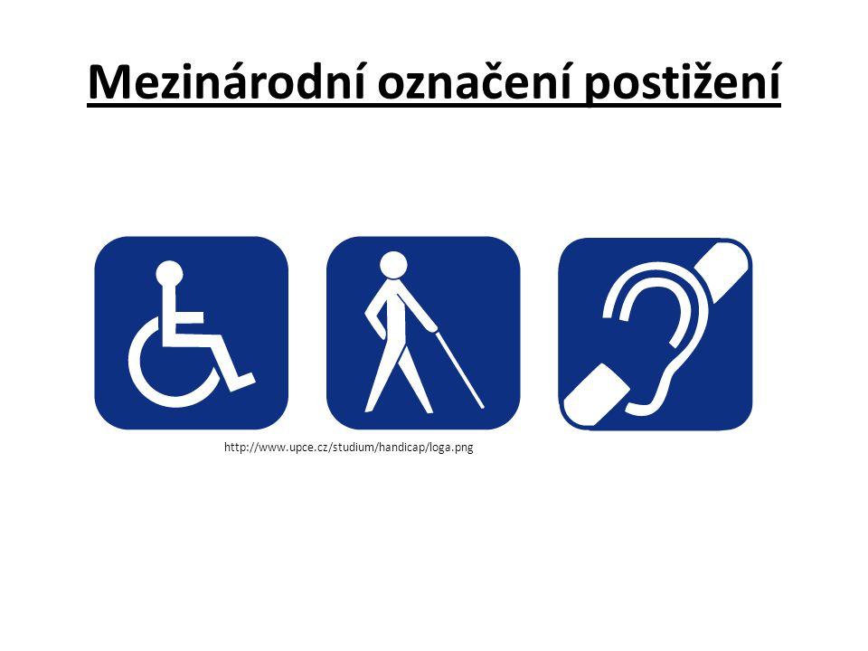 Mezinárodní označení postižení