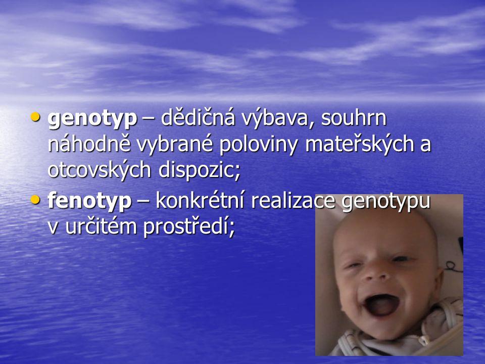 genotyp – dědičná výbava, souhrn náhodně vybrané poloviny mateřských a otcovských dispozic;
