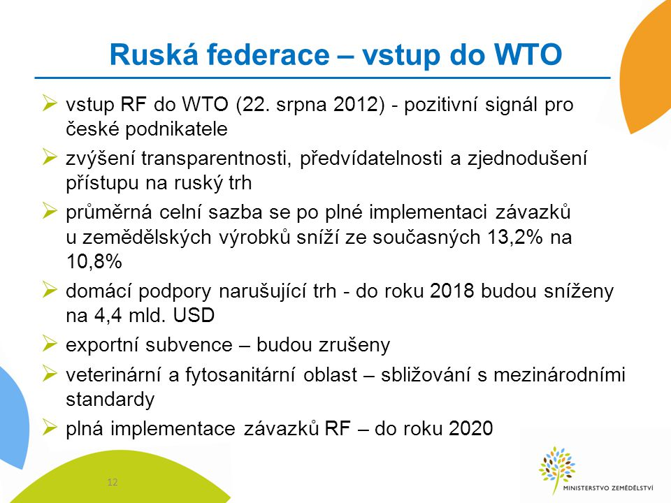 Ruská federace – vstup do WTO