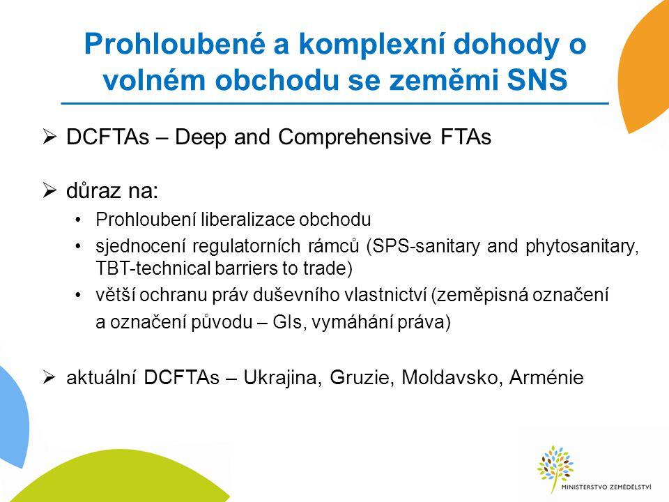 Prohloubené a komplexní dohody o volném obchodu se zeměmi SNS