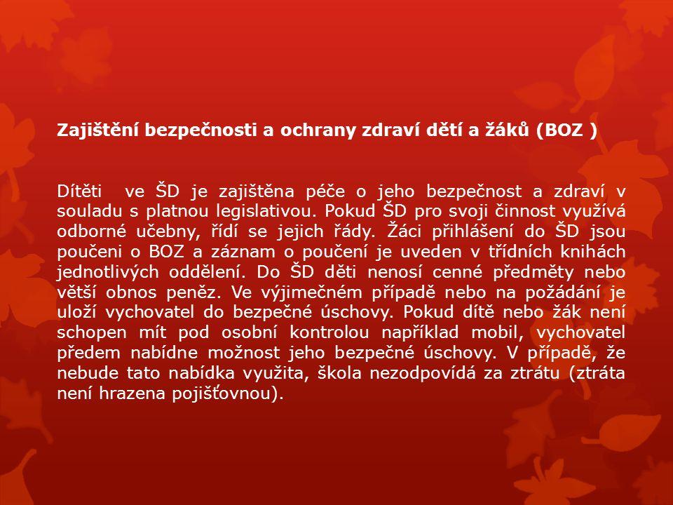 Zajištění bezpečnosti a ochrany zdraví dětí a žáků (BOZ )