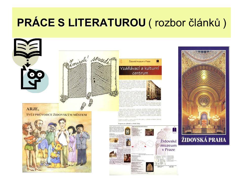 PRÁCE S LITERATUROU ( rozbor článků )