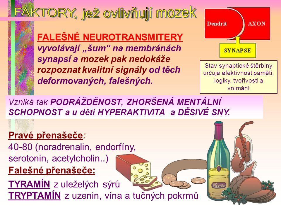 FAKTORY, jež ovlivňují mozek