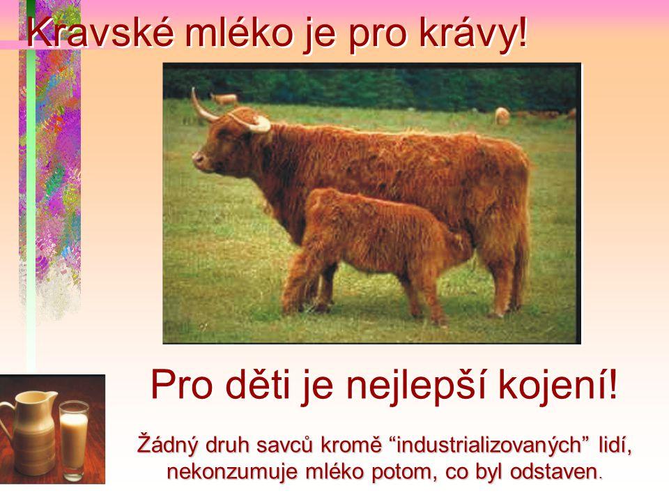 Kravské mléko je pro krávy!