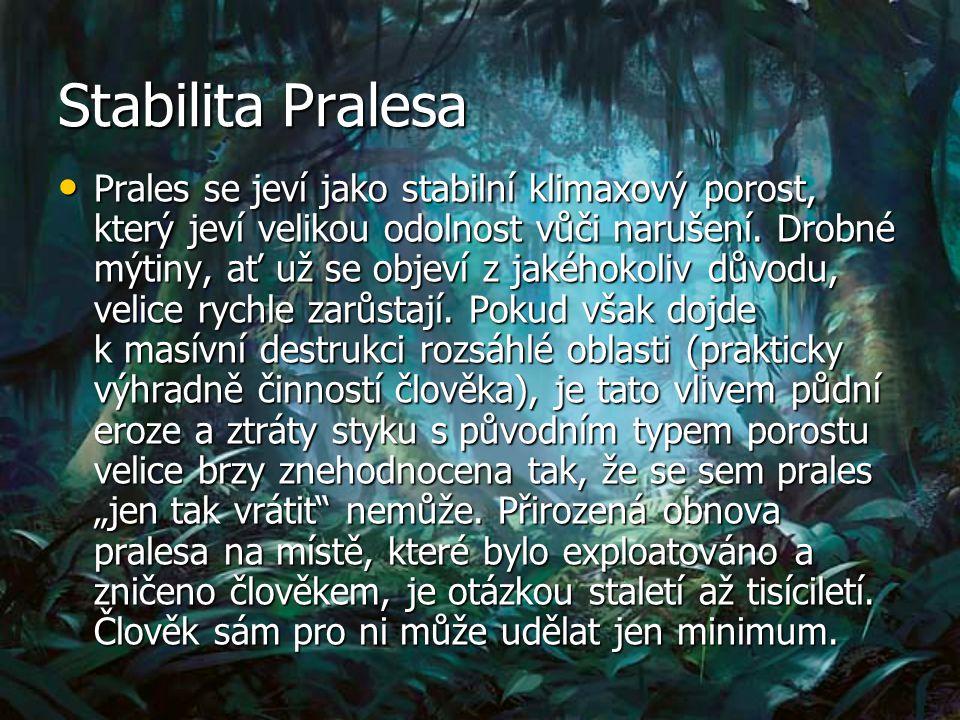Stabilita Pralesa