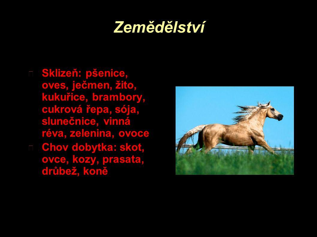 Zemědělství Sklizeň: pšenice, oves, ječmen, žito, kukuřice, brambory, cukrová řepa, sója, slunečnice, vinná réva, zelenina, ovoce.