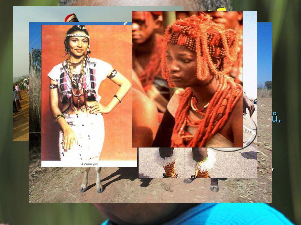ETNIKUM V Nigérii žije více než 250 etnických skupin