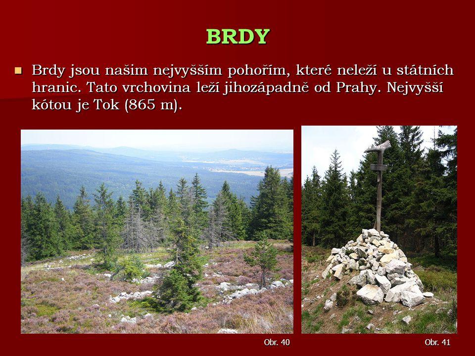 BRDY Brdy jsou našim nejvyšším pohořím, které neleží u státních hranic. Tato vrchovina leží jihozápadně od Prahy. Nejvyšší kótou je Tok (865 m).