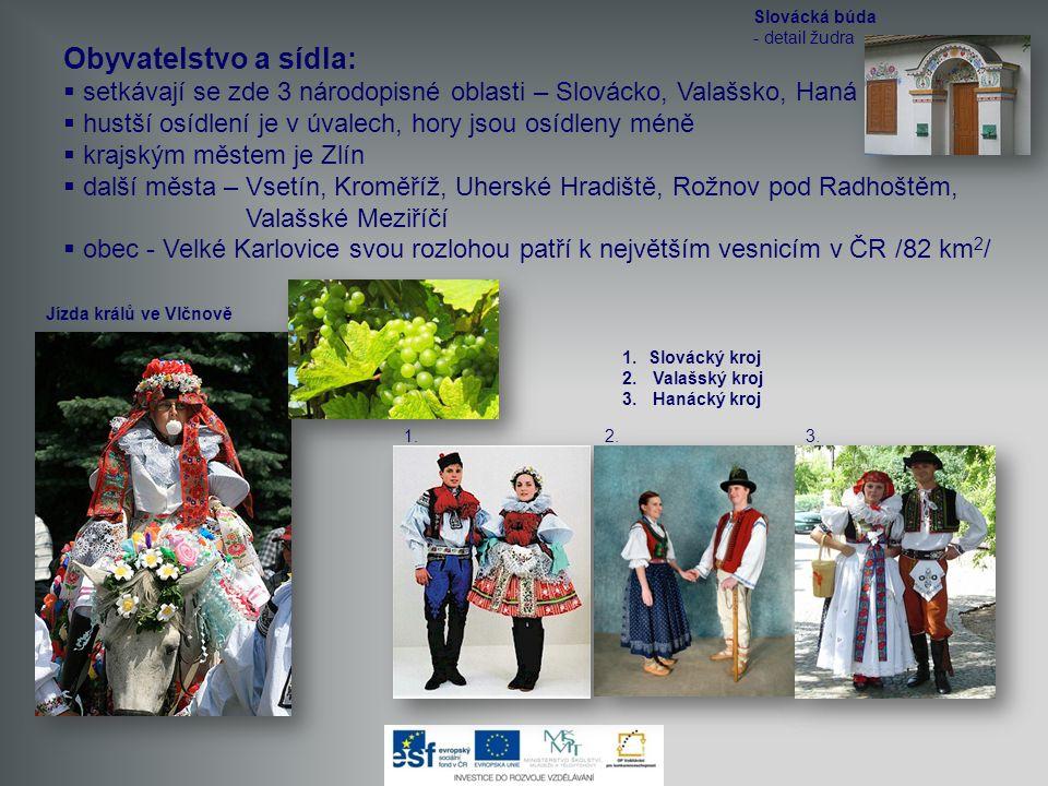 Slovácká búda - detail žudra. Obyvatelstvo a sídla: setkávají se zde 3 národopisné oblasti – Slovácko, Valašsko, Haná.