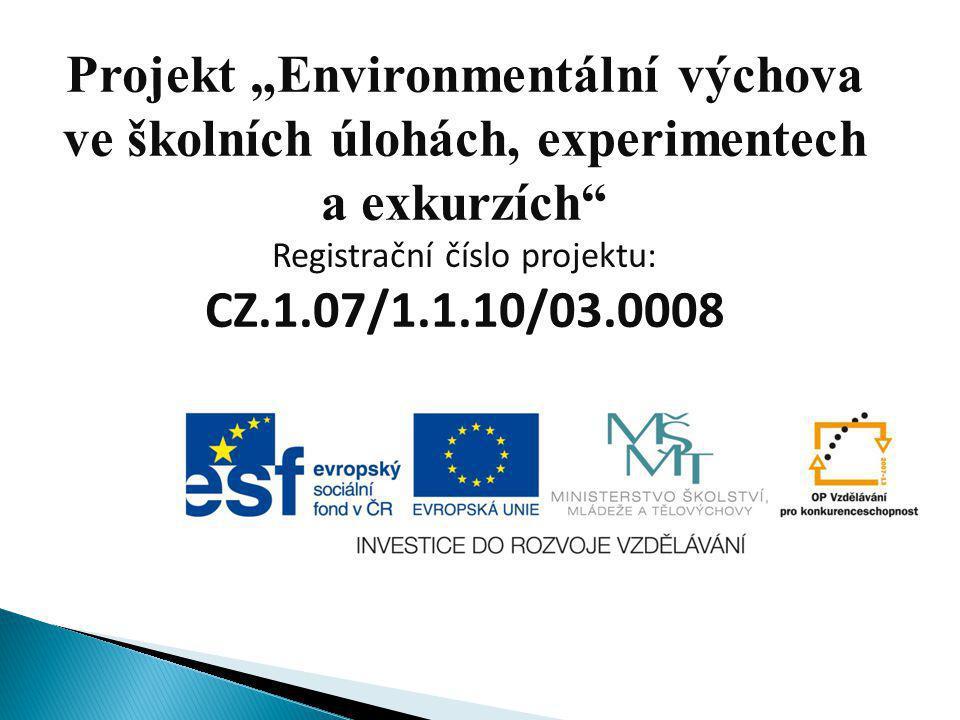 Registrační číslo projektu: