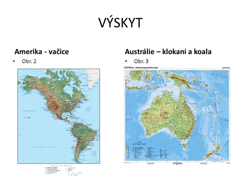 VÝSKYT Amerika - vačice Austrálie – klokani a koala Obr. 2 Obr. 3