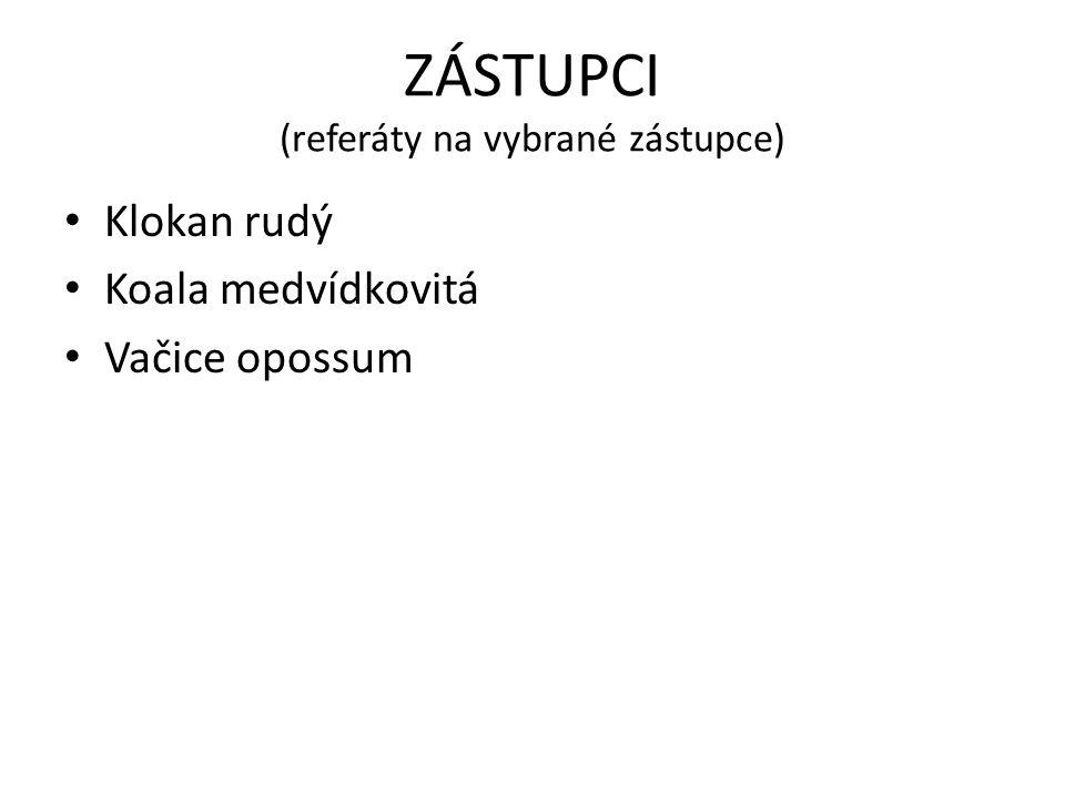 ZÁSTUPCI (referáty na vybrané zástupce)