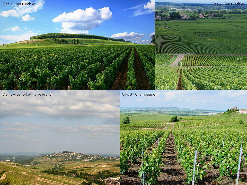 Obr. 1 - Burgundsko Obr. 4 - Burgundsko Obr. 2 – pahorkatiny ve Francii Obr. 3 - Champagne
