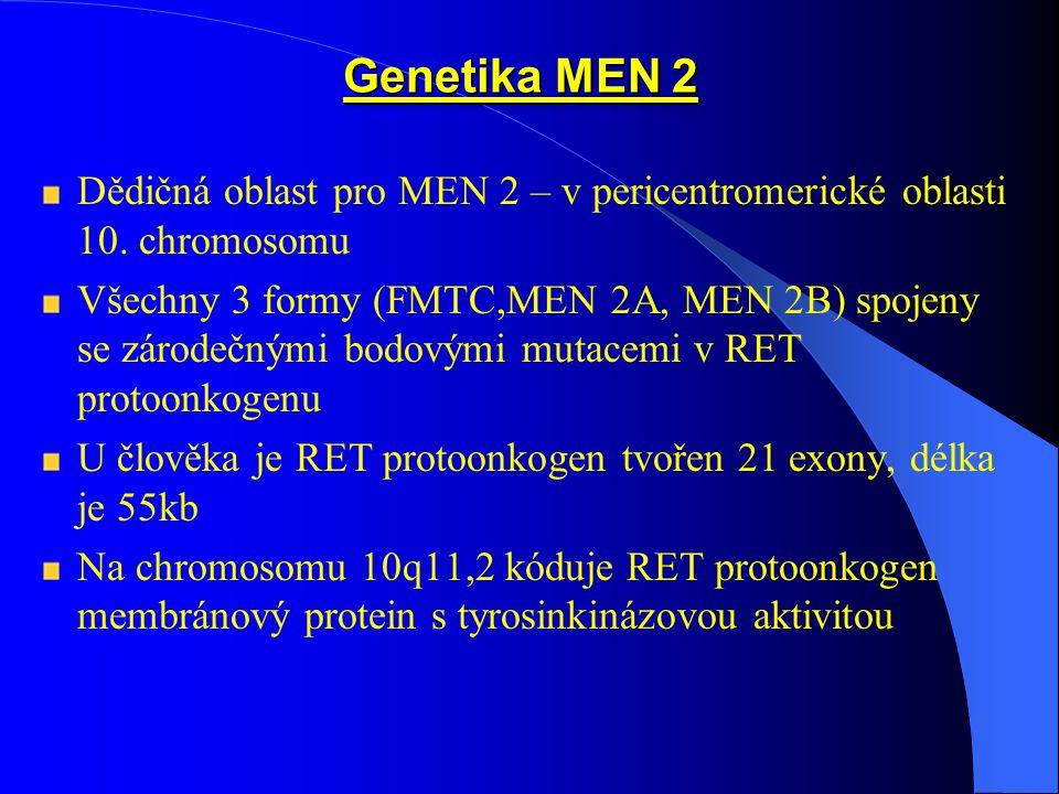 Genetika MEN 2 Dědičná oblast pro MEN 2 – v pericentromerické oblasti 10. chromosomu.