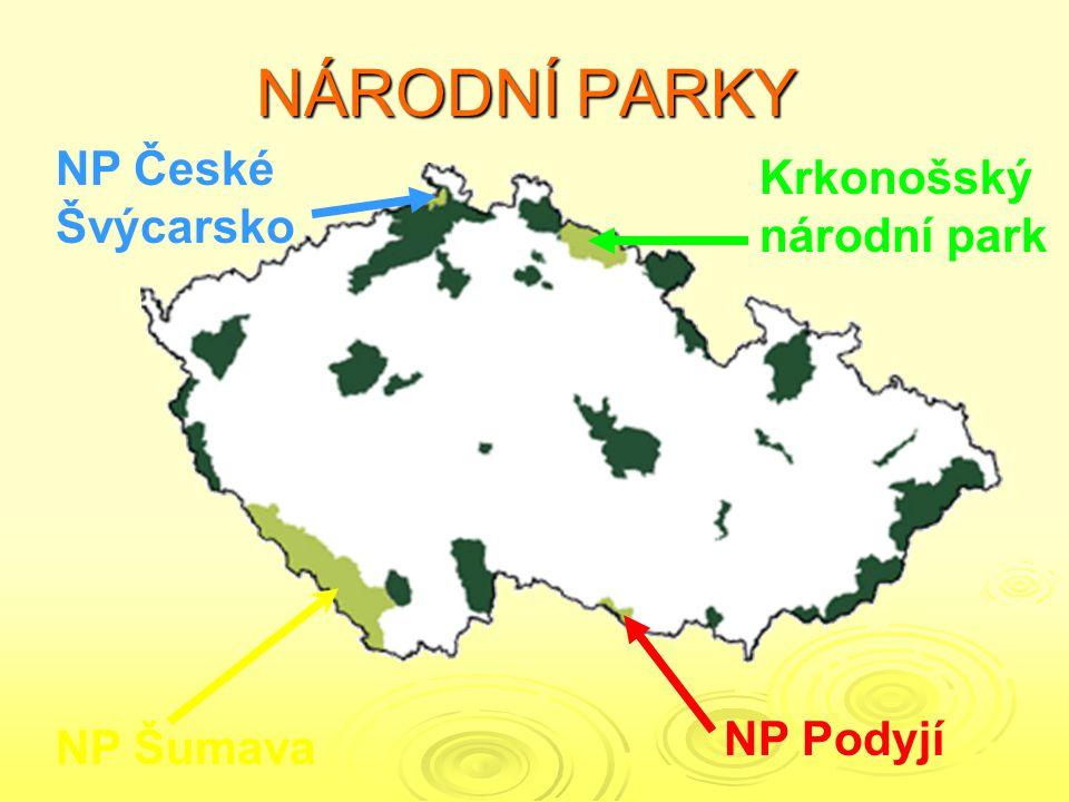 NÁRODNÍ PARKY NP České Švýcarsko Krkonošskýnárodní park NP Podyjí