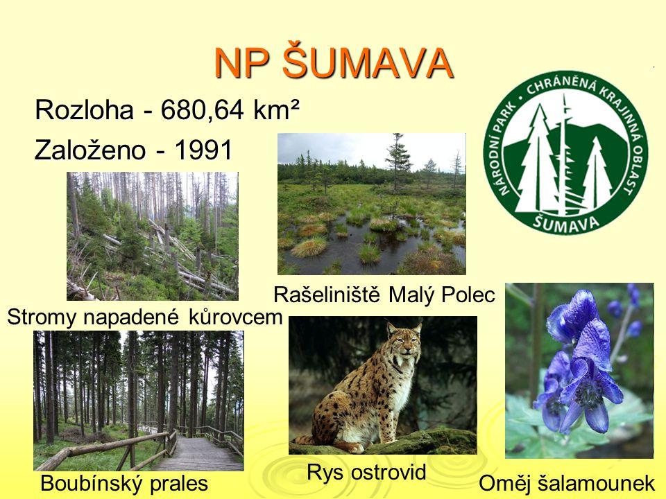NP ŠUMAVA Rozloha - 680,64 km² Založeno - 1991 Rašeliniště Malý Polec