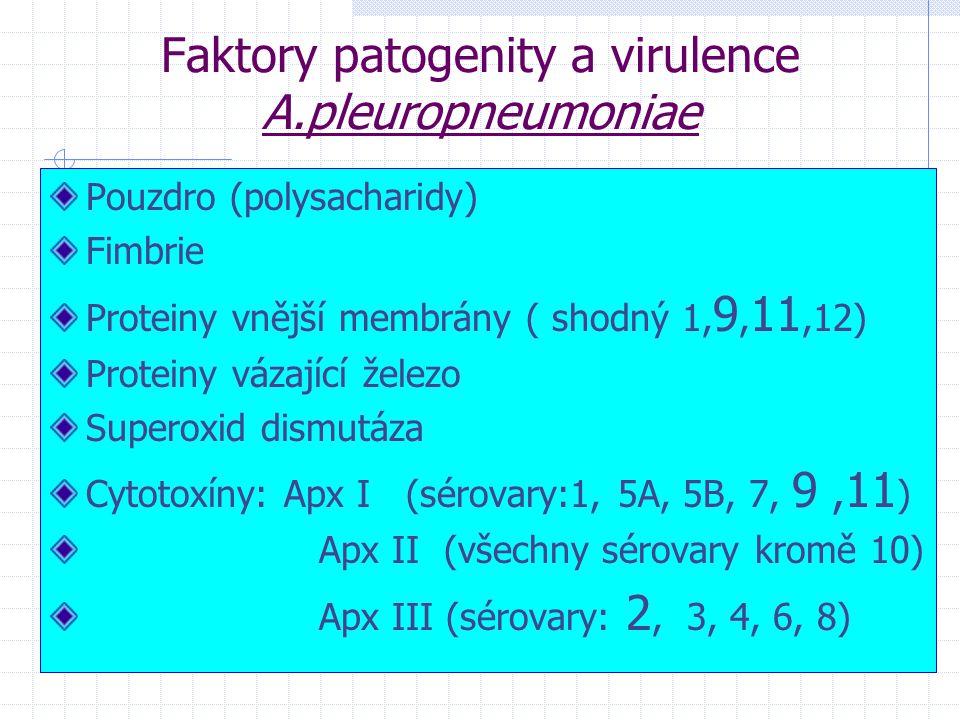 Faktory patogenity a virulence A.pleuropneumoniae