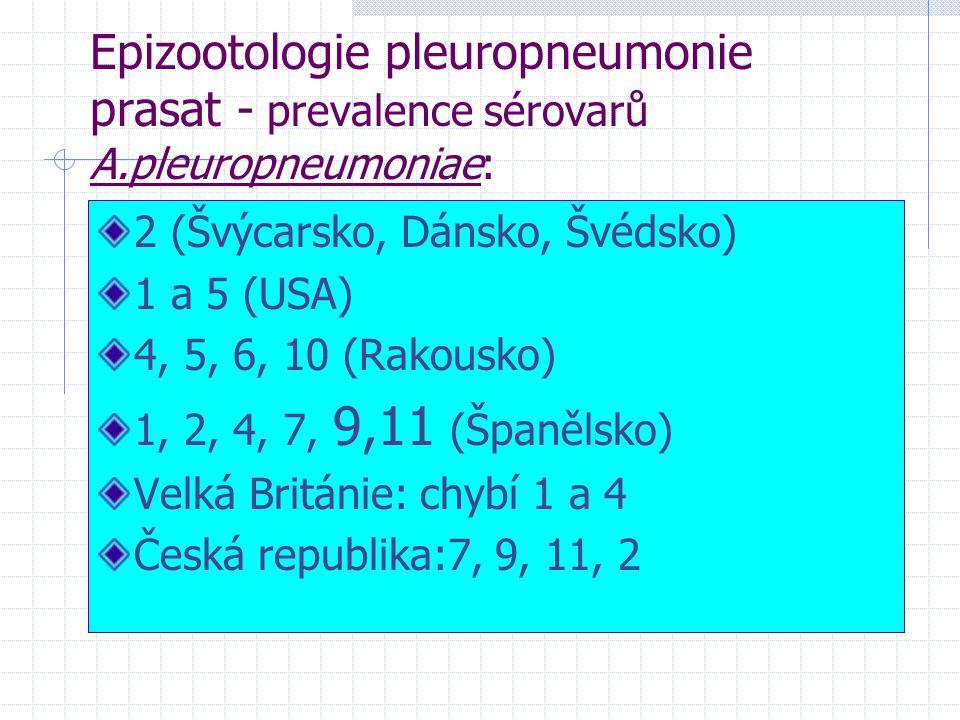 Epizootologie pleuropneumonie prasat - prevalence sérovarů A