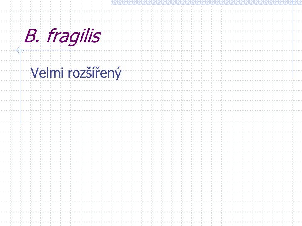B. fragilis Velmi rozšířený