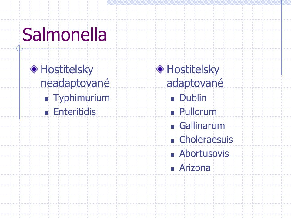 Salmonella Hostitelsky neadaptované Hostitelsky adaptované Typhimurium