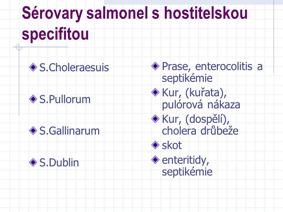 Sérovary salmonel s hostitelskou specifitou