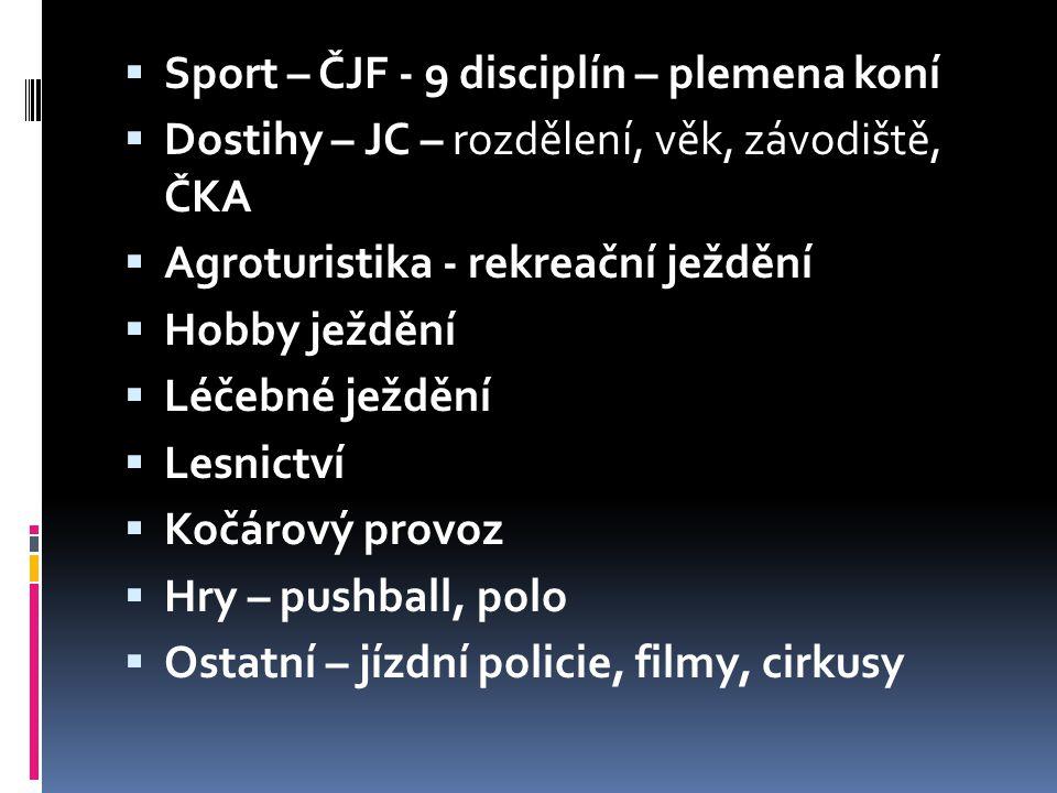 Sport – ČJF - 9 disciplín – plemena koní