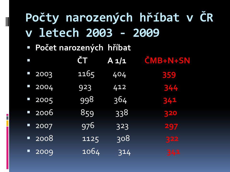 Počty narozených hříbat v ČR v letech 2003 - 2009