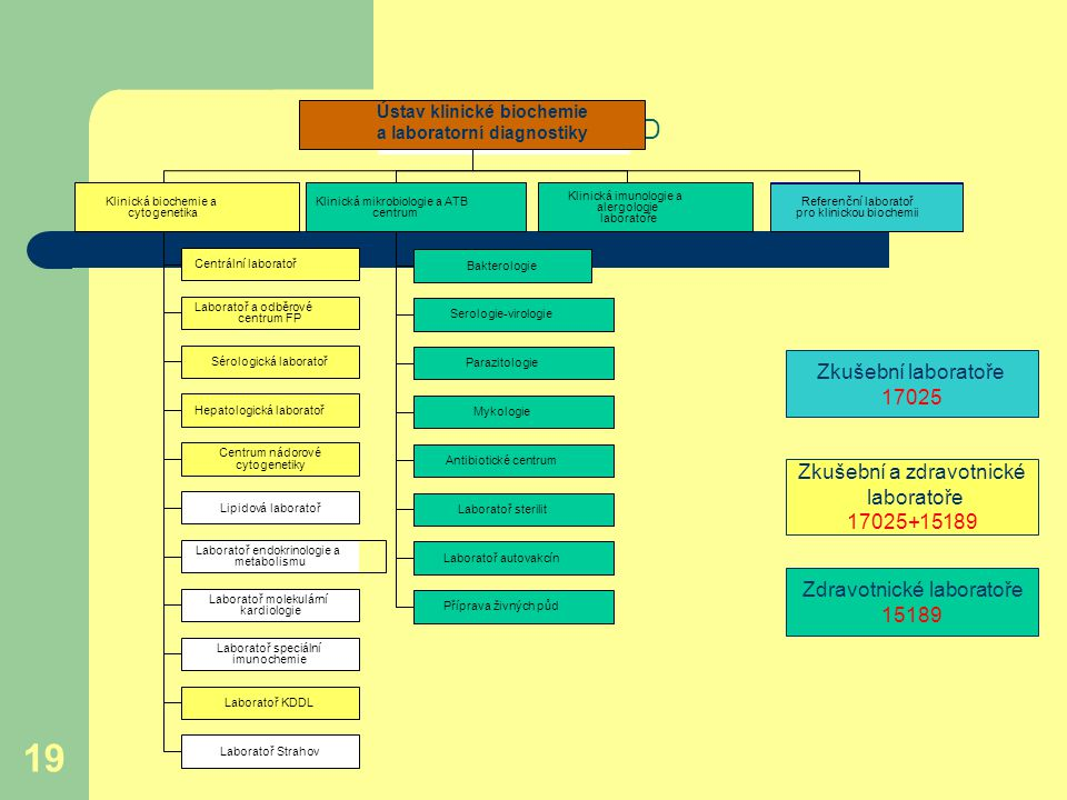 Organizační schéma ÚKBLD