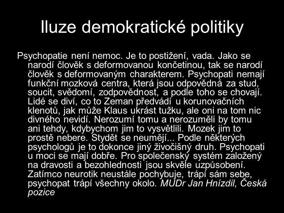 Iluze demokratické politiky