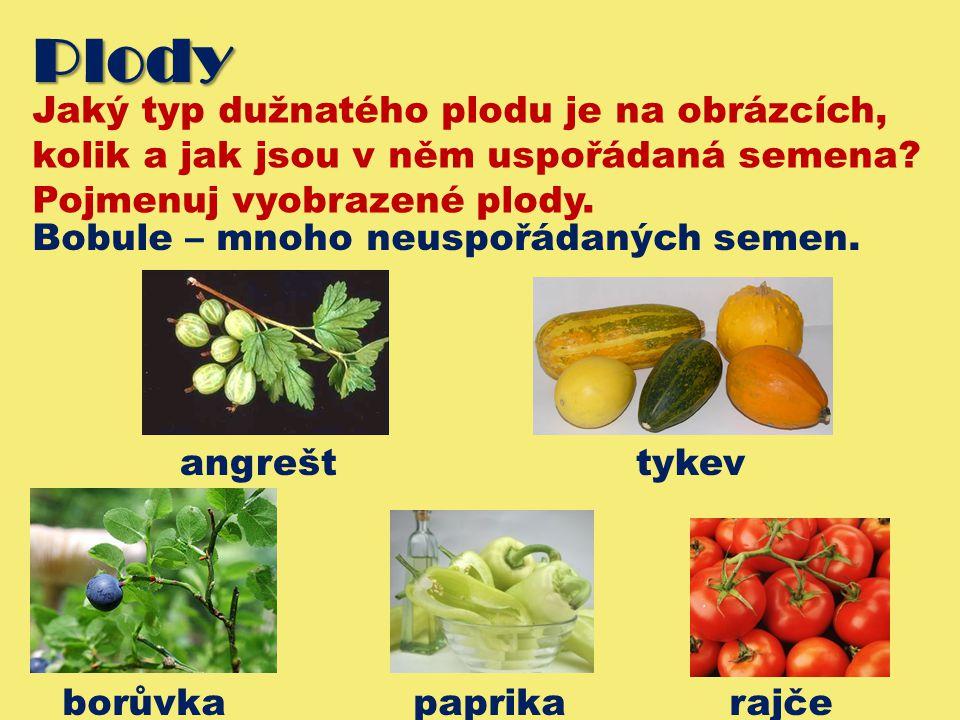 Plody Jaký typ dužnatého plodu je na obrázcích,