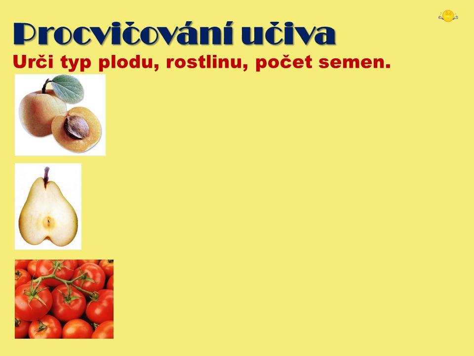 Procvicování uciva Urči typ plodu, rostlinu, počet semen.