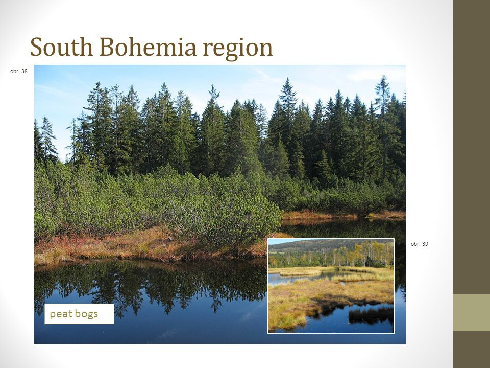 South Bohemia region obr. 38 obr. 39 peat bogs