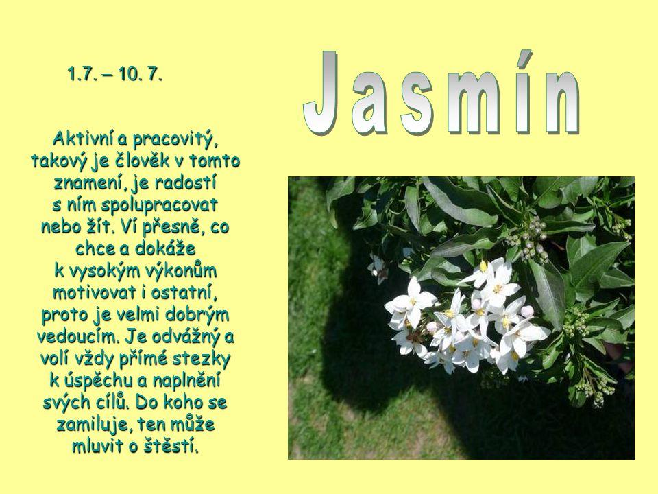 Jasmín 1.7. – 10. 7.