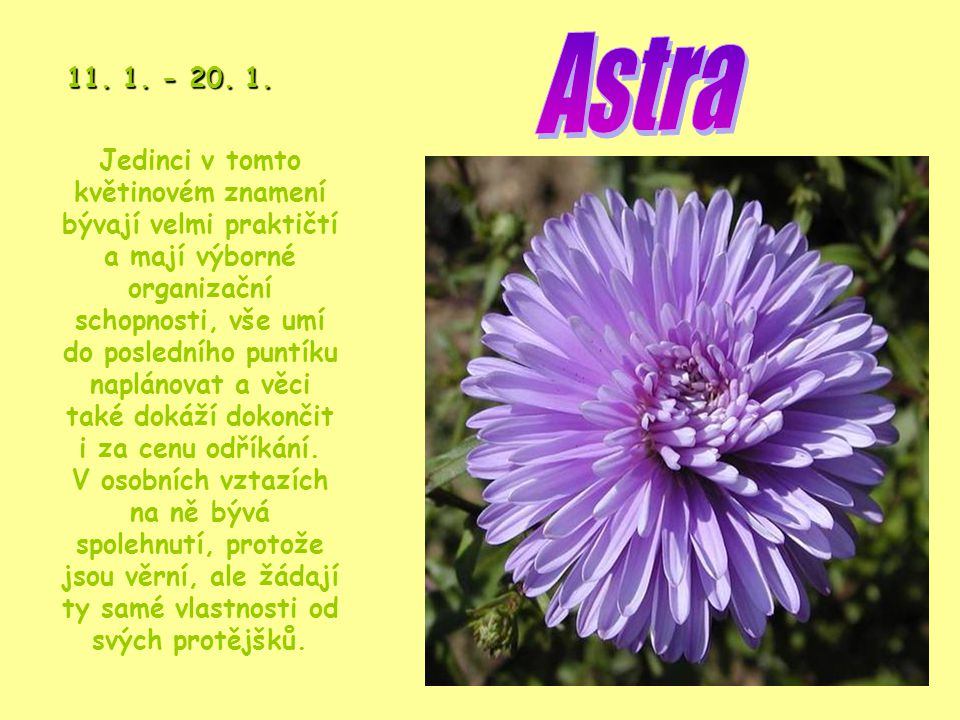 Astra 11. 1. - 20. 1.