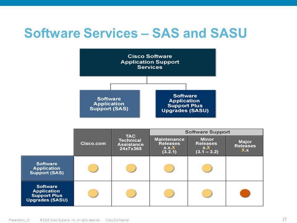 Software Services – SAS and SASU