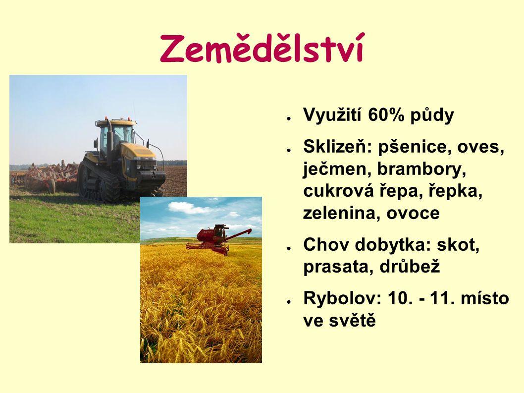 Zemědělství Využití 60% půdy