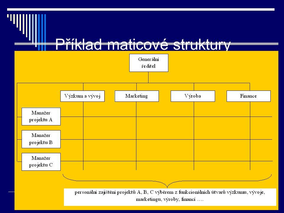 Příklad maticové struktury