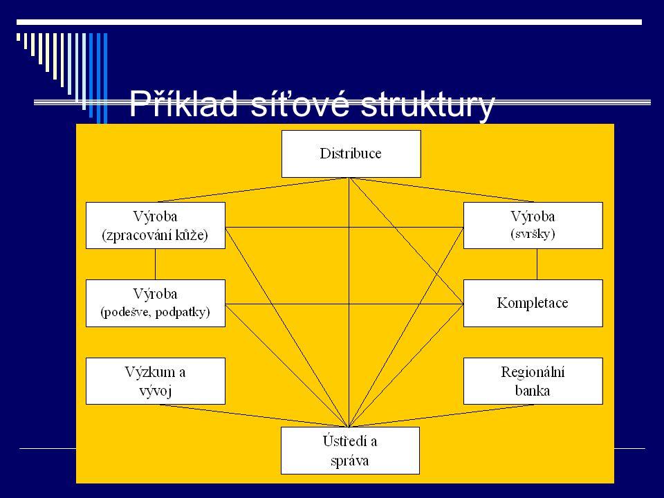 Příklad síťové struktury