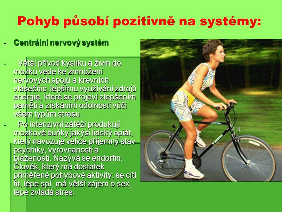 Pohyb působí pozitivně na systémy: