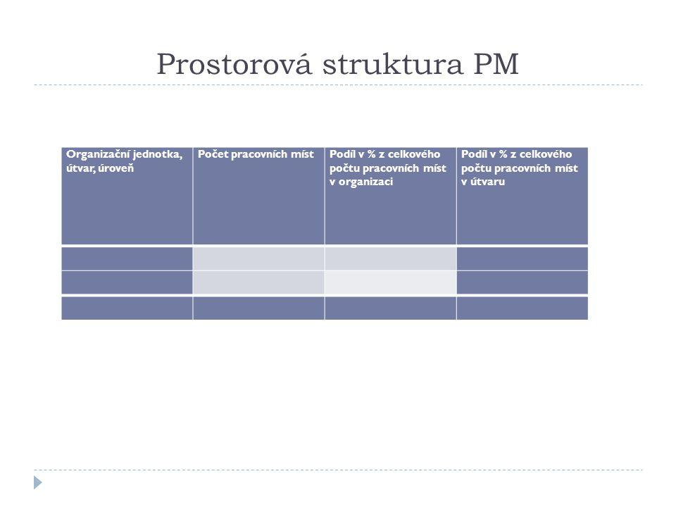 Prostorová struktura PM