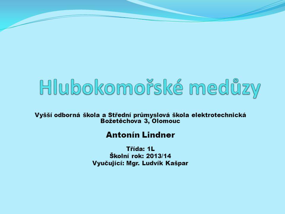 Vyučující: Mgr. Ludvík Kašpar