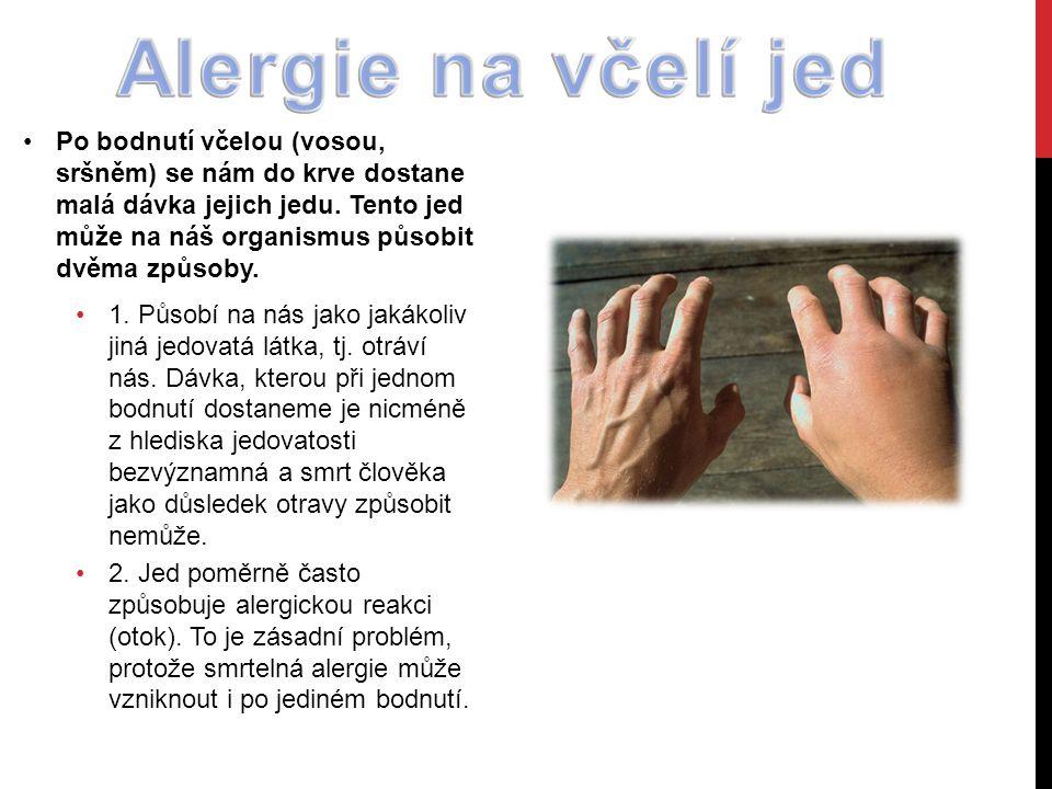 Alergie na včelí jed
