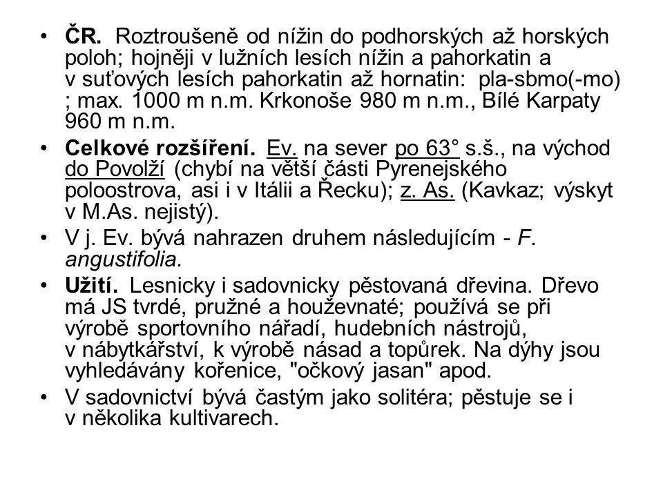 ČR. Roztroušeně od nížin do podhorských až horských poloh; hojněji v lužních lesích nížin a pahorkatin a v suťových lesích pahorkatin až hornatin: pla-sbmo(-mo) ; max. 1000 m n.m. Krkonoše 980 m n.m., Bílé Karpaty 960 m n.m.