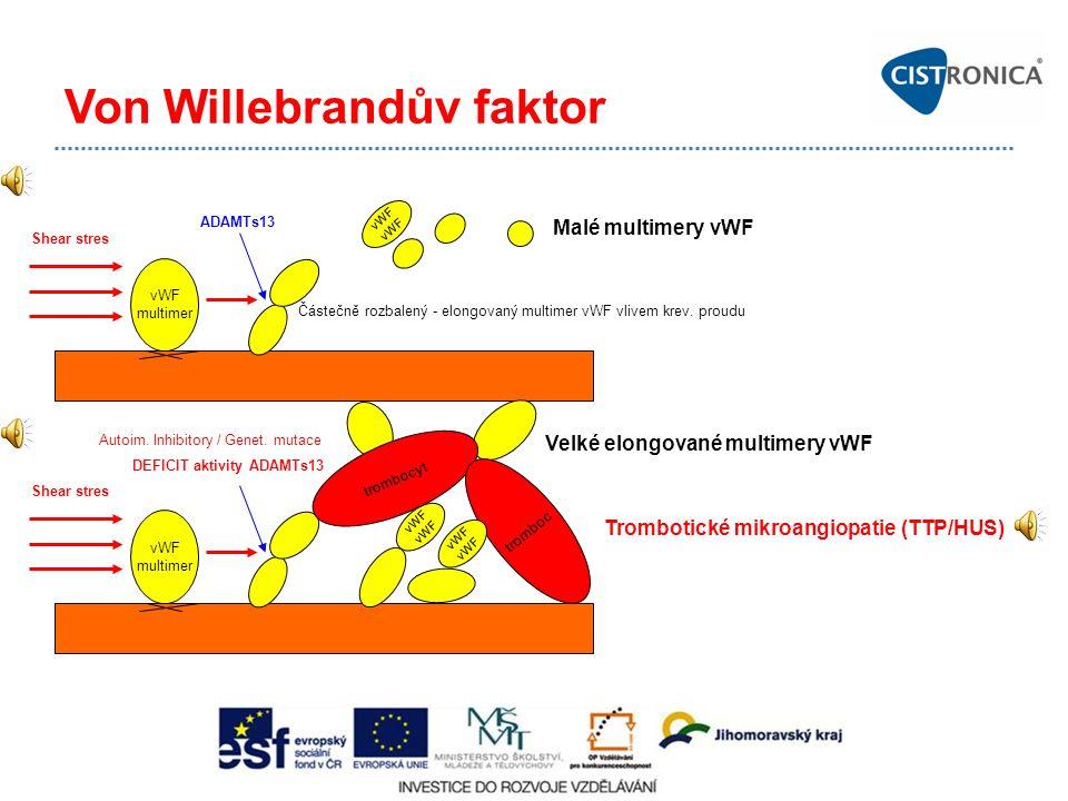 Von Willebrandův faktor